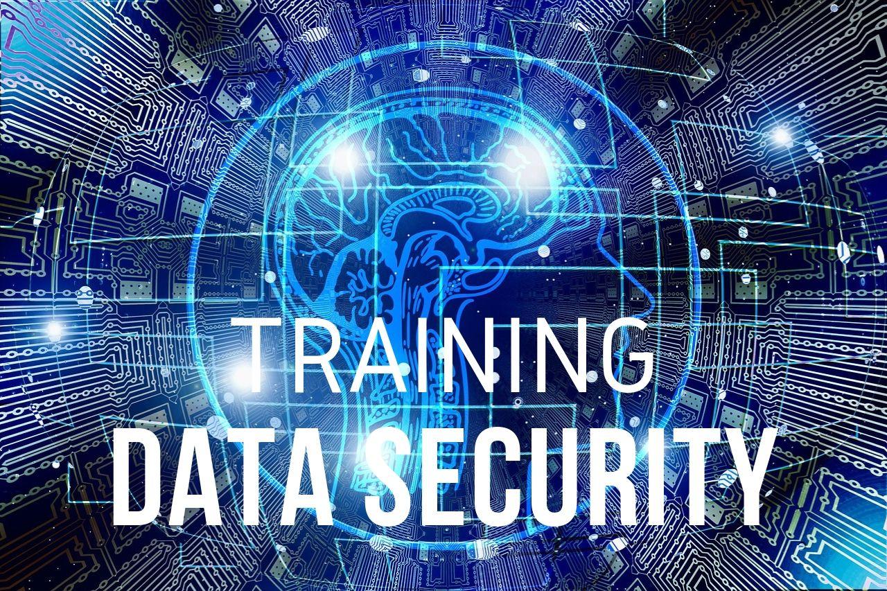 Training Data Security